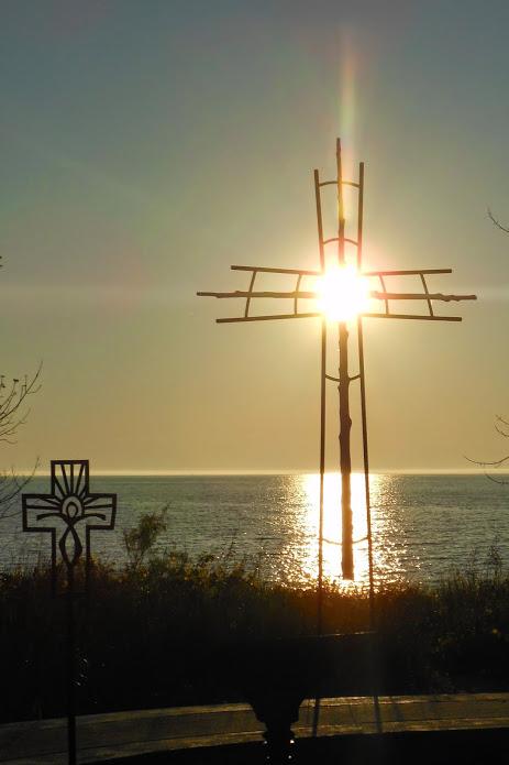 arcadia-crosses-2014-7